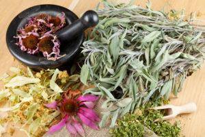 Plantes médicinales et pilon étalées (sauge, échinacée, calendula) - Respiration Pilates